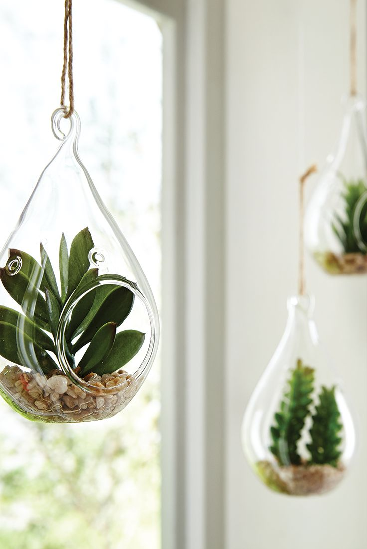 "Perfectly sized for greening up a small space, Pier 1's Faux Succulent Glass Ornament Set introduces a moment of natural tranquility to an ""up close and personal"" setting. Three faux succulents, each in its own glass terrarium-style ornament, invite a closer look with a design statement all on their own. Display them on a mantel, hang them from a small ornamental tree or let them capture reflected light in a window."