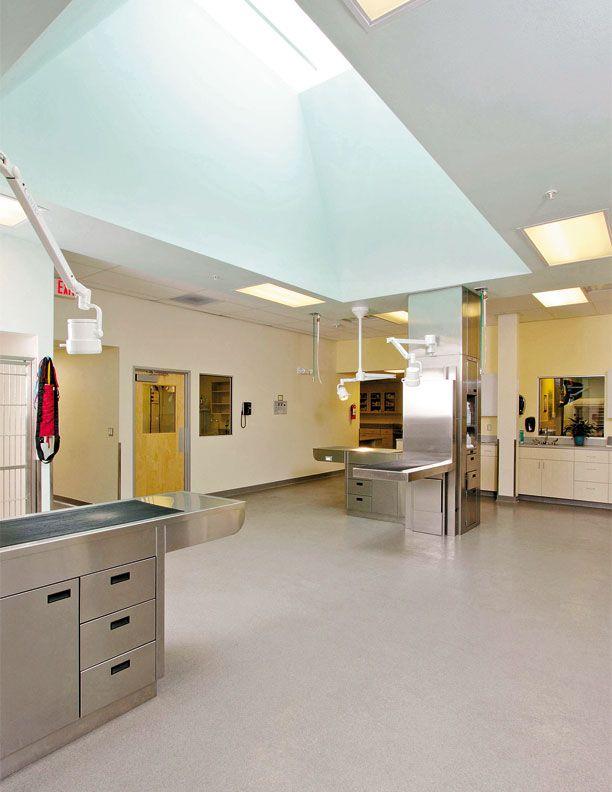 Large skylight   Hospital Design
