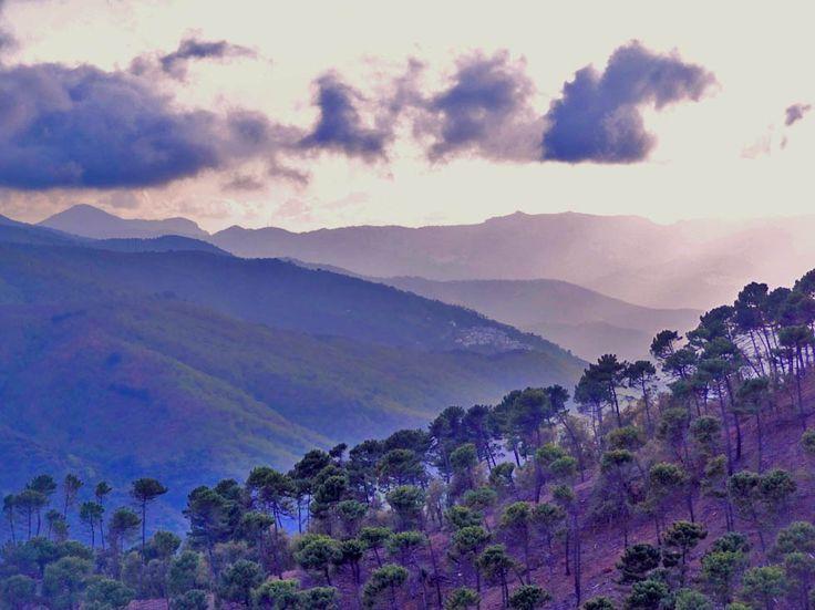 www.aprettyidea.com -  Andalusia