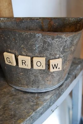 Such a cute idea! If you have spare letters from scrabble, make them into magnets! You could change out the letters to spell out whatever plant you are growing.