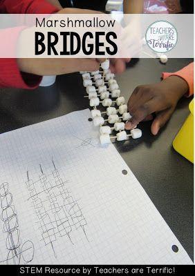 113 best bridges in stem class images on pinterest stem challenges stem challenge bridges with marshmallows malvernweather Choice Image
