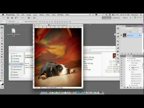 Creating and Using Actions - Pets and People Photography with Vicki Taufer
