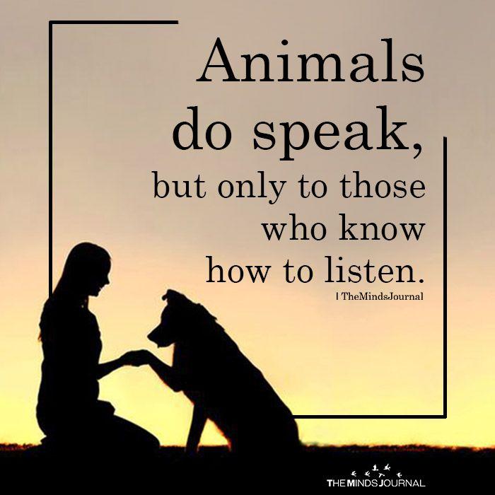 Animals Do Converse