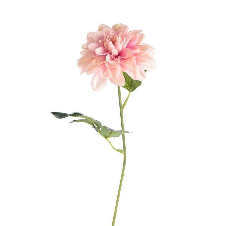 stielblume dahlie rosa ca l 45 cm badezimmer beauty pflege pinterest flure badezimmer. Black Bedroom Furniture Sets. Home Design Ideas