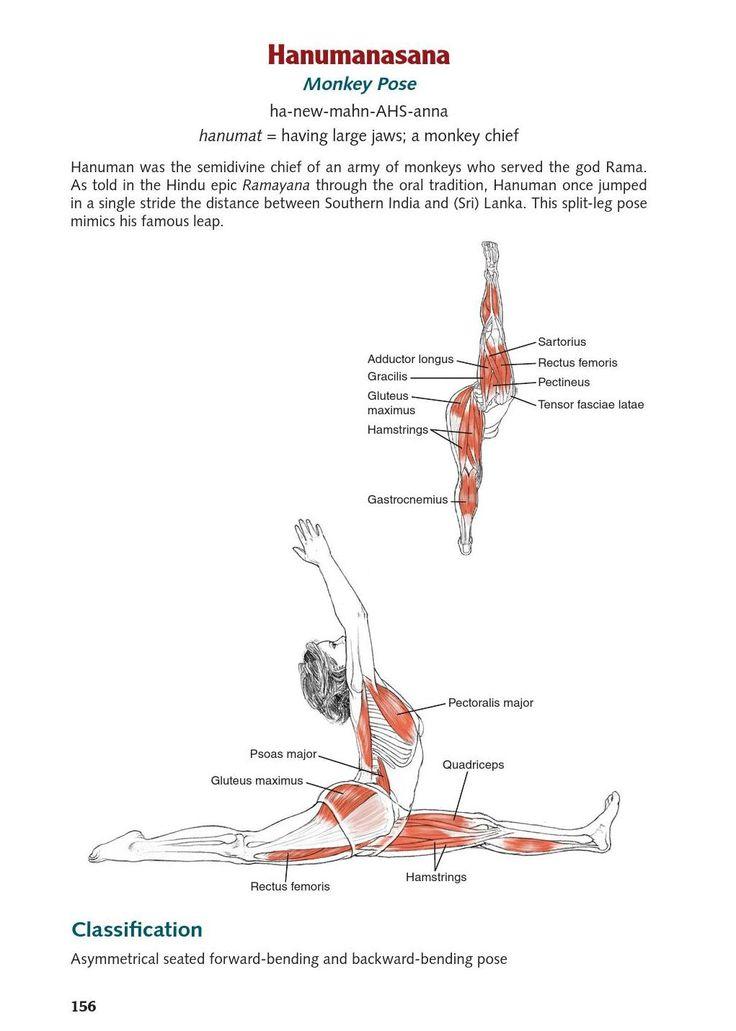 Ungewöhnlich Anatomie Yoga Posen Fotos - Anatomie Ideen - finotti.info