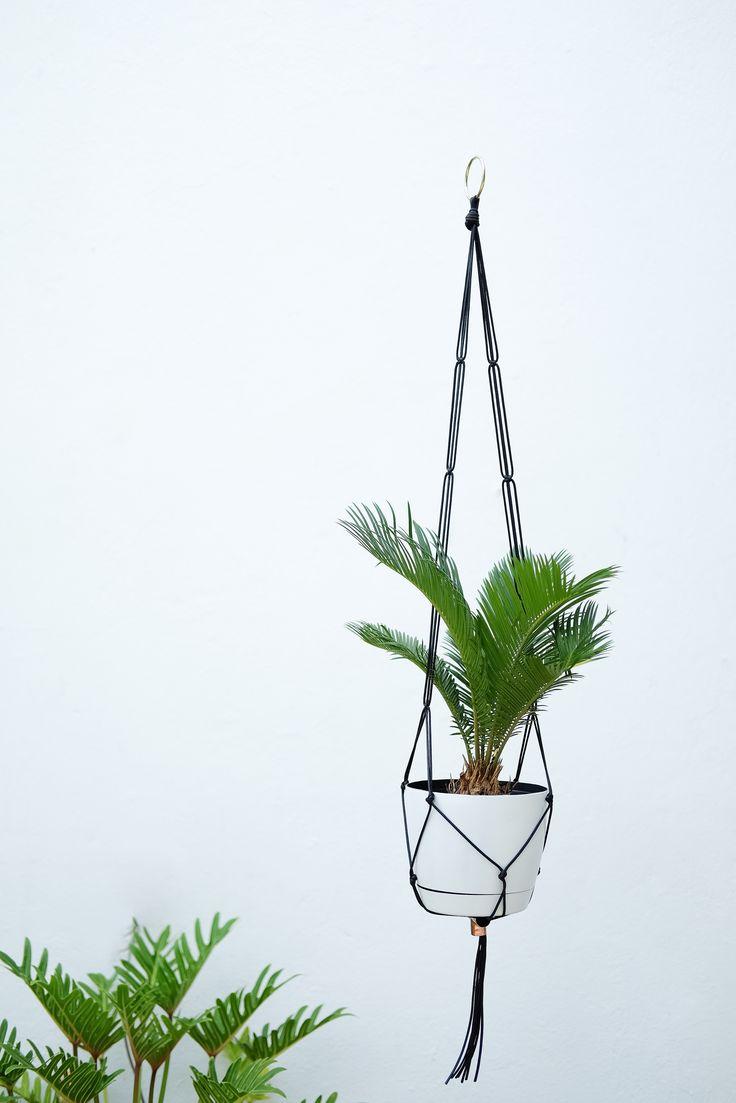 .: LINEAR :. PLANT HANGER