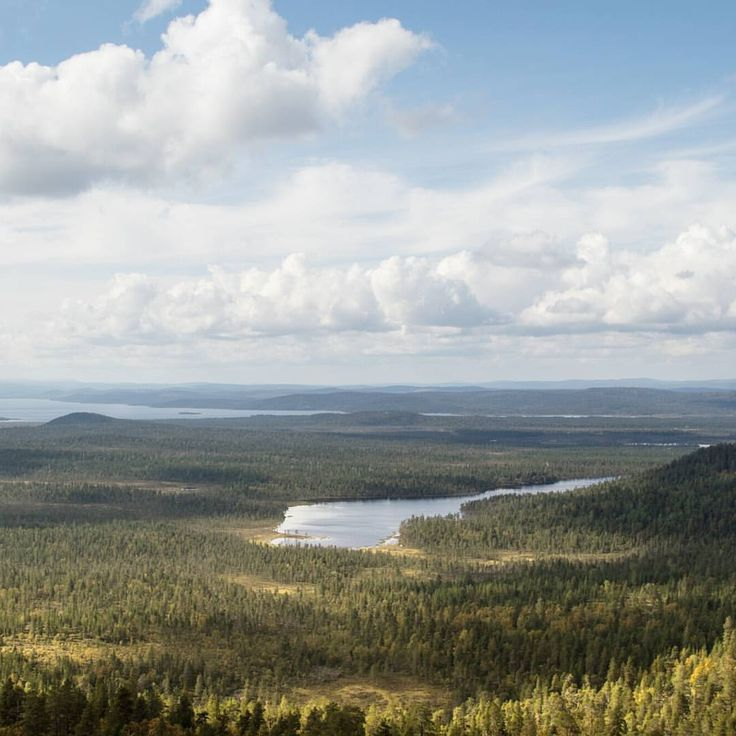 Today I visited Otsamo fell in Inari. I was the only one up there.