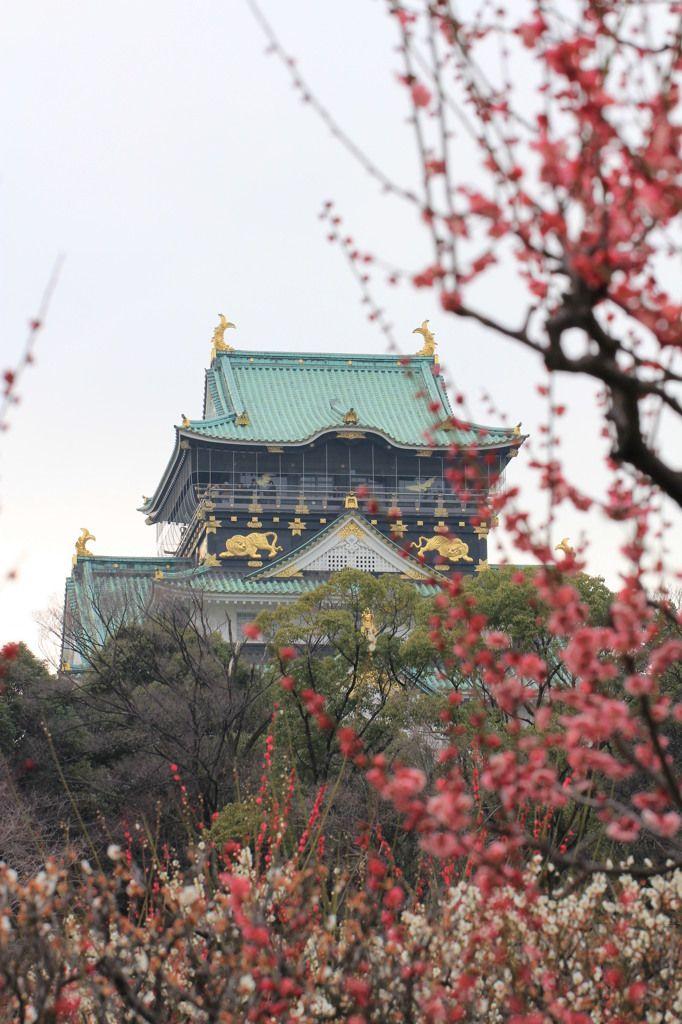 Osaka Castle, Japan 大阪城