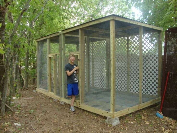 Image result for dual bird cage