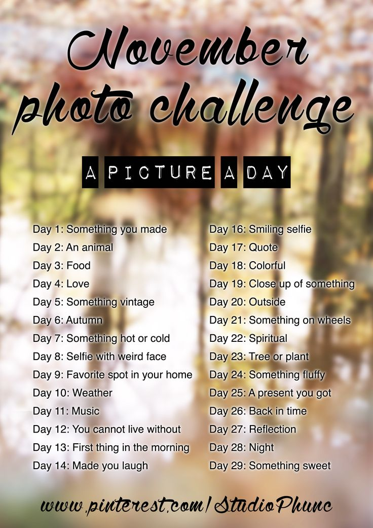 The Phunc November photo challenge 2014! Use this list to take a beautiful picture a day. Post it on Pinterest, Facebook or just keep it to yourself. Good luck and have fun!  Would love to follow your November Photo challenge, let me know where it is!