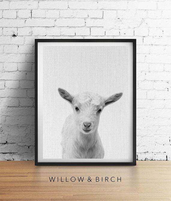 Baby GOAT Printable Art Animal Nursery by WillowandBirchPrints
