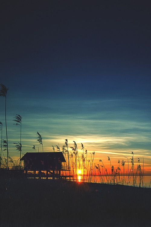 wavemotions:  Sunset today by Ingo Kremmel