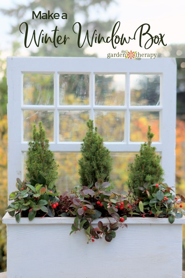 60d37f6769392e9002aacfb0519ae9d4 - Better Homes And Gardens A Wonderful Winter