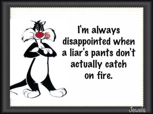 Liars | Funny Pictures!Laugh, Quotes, Liars Liars, True, Funny Stuff, Humor, Things, Fire, Liars Pants