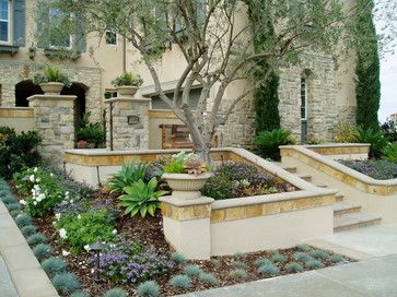 modern tuscan dramatic pool, outdoor living room, mediterranean landscape (king sago, agave and italian cypress)
