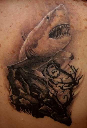 another shark tattoo