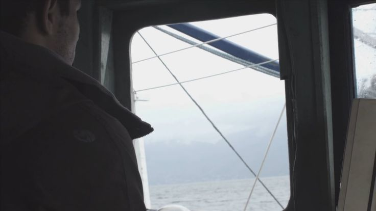 S.O.S. Mata Atlantica Video