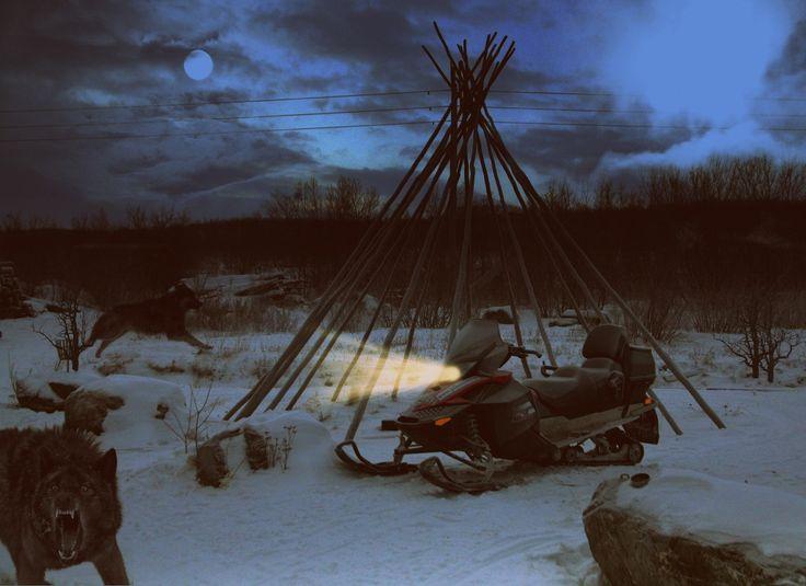 Wolf attack! by Vittorio Chiampan
