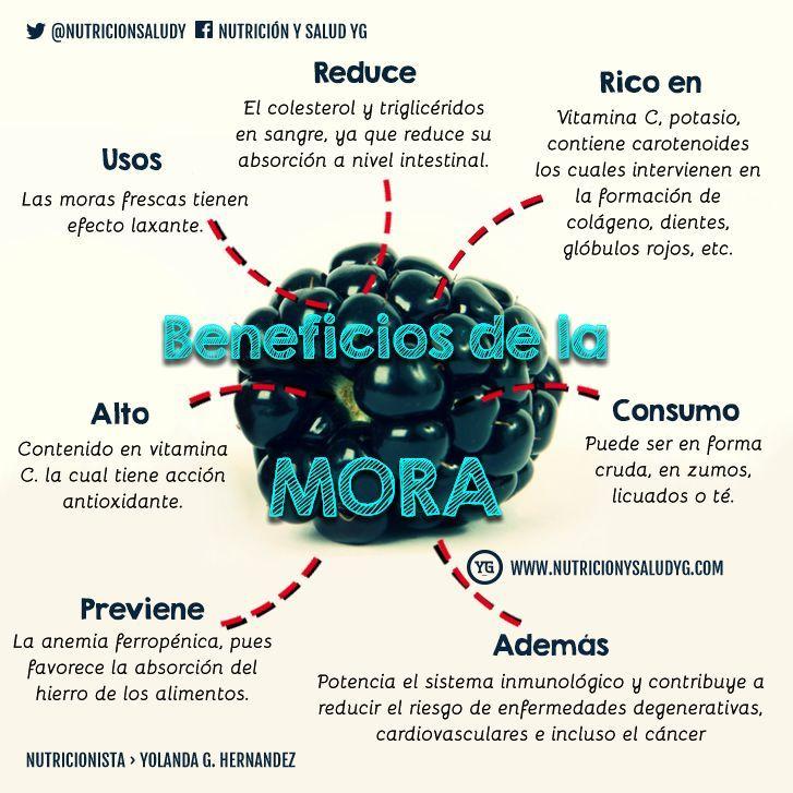 Mora 15 increíbles propiedades  http://nutricionysaludyg.com/nutricion/mora-15-propiedades-beneficios/