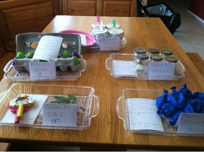 5 senses experiments to do with early elementary