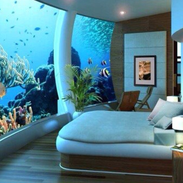 I want a fish tank this big in my house things i want for Fish tank bedroom ideas