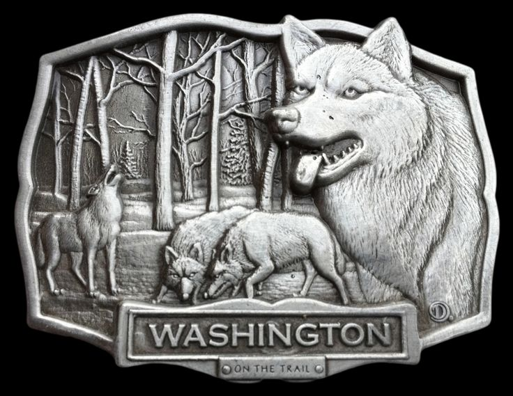 WASHINGTON STATE LONE WOLF PACK GREY WILD HOWLING WOLVES BELT BUCKLE BUCKLES #washington #washingtonwolf #wolves #wildanimal #beltbuckle #coolbuckles #wolfbeltbuckle