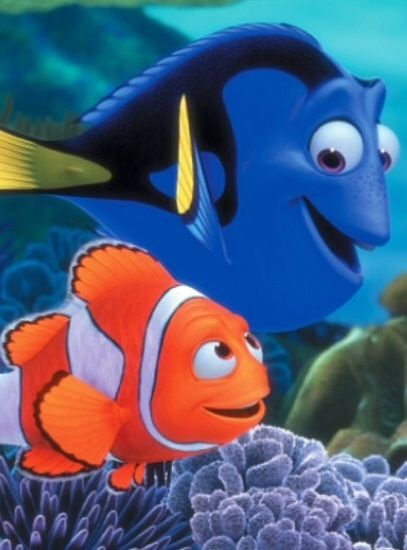 dory and marlin relationship advice
