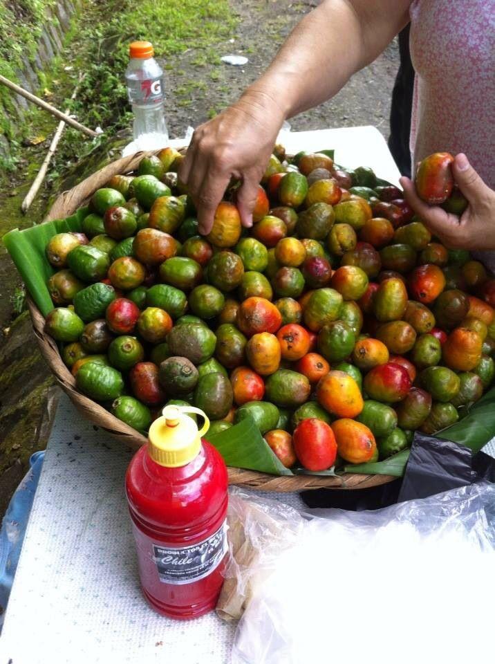 Jocotes Santa Ana El Salvador