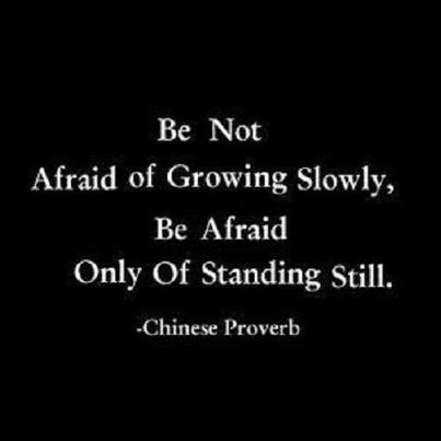 Be not afraid of growing slowly, be afraid only of standing still.