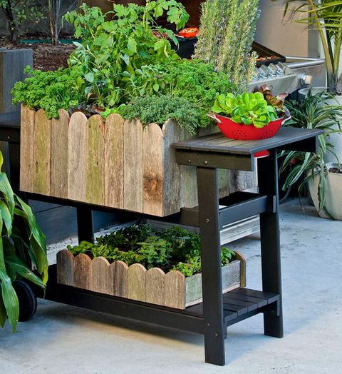 How To Make A Barbecue Planter Better Homes And Gardens