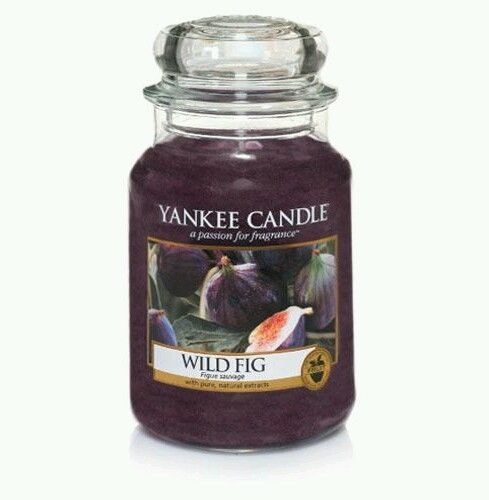 Yankee 'Wild Fig' Fragranced Large Jar Candle. New