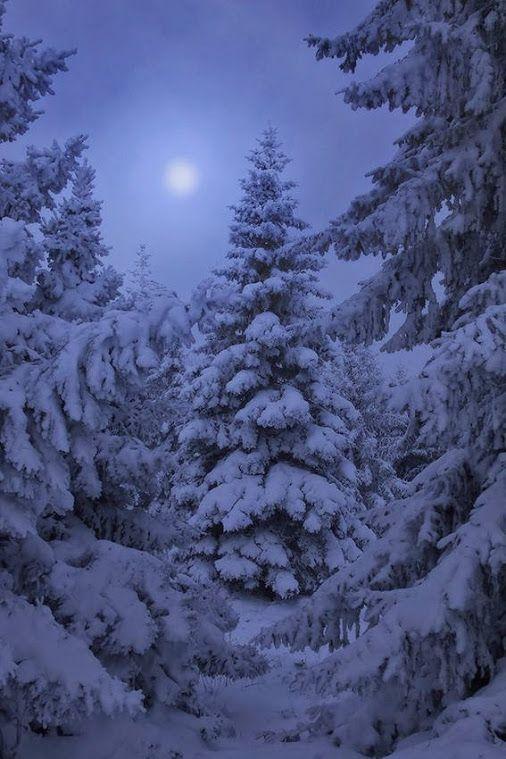 Serene moon