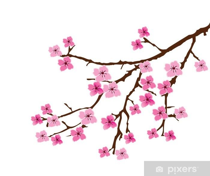 Vector Cherry Blossom Sticker Pixers We Live To Change Cherry Blossom Art Cherry Blossom Drawing Cherry Blossom Vector