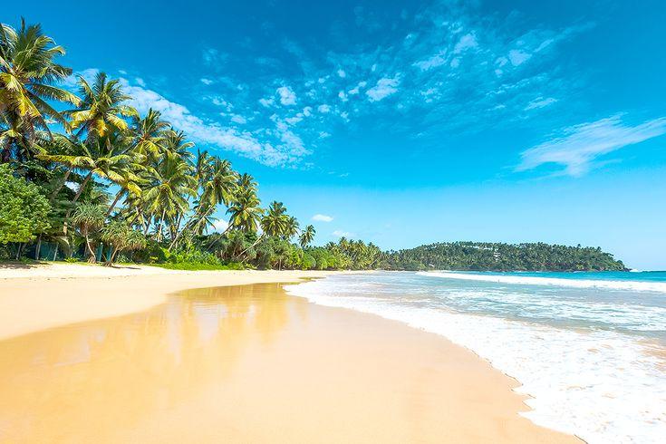 Det är inte längre bara Thailand som gäller när det är dags att boka in höstens eller vinterns semesterresa. Läs om varför du borde överväga Sri Lanka!