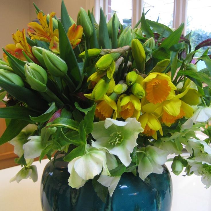 Daffodils, tulips, helibores