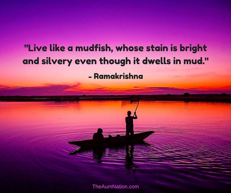 """""""Live like a mudfish, whose stain is bright and silvery even though it dwells in mud."""" - Ramakrishna"""