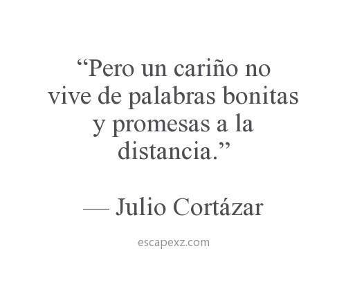 """""""Pero un cariño no viene de palabras bonitas y promesas a la distancia."""" #frases #JulioCortázar #citas"""
