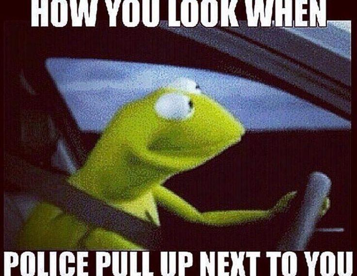 Funny Kermit The Frog: 99 Bästa Bilderna Om Sense Of Humor På Pinterest