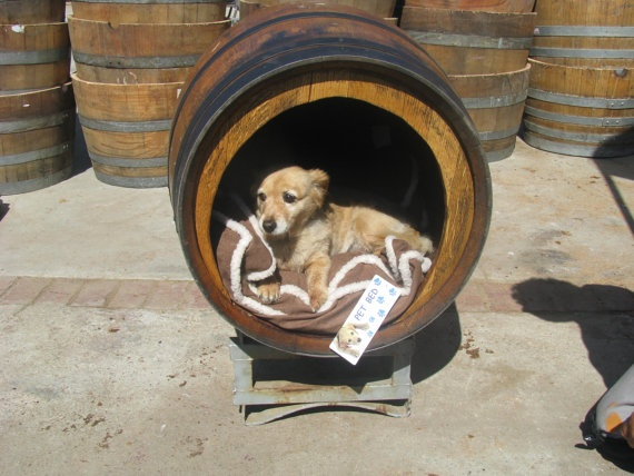 wine barrel + puppy = hello adorable!