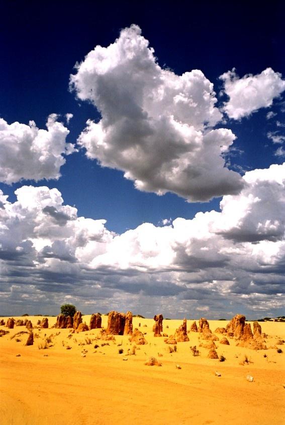 The Pinnacles, WA, Australia