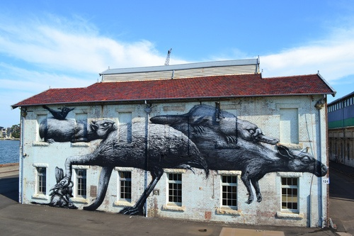 """Roa 