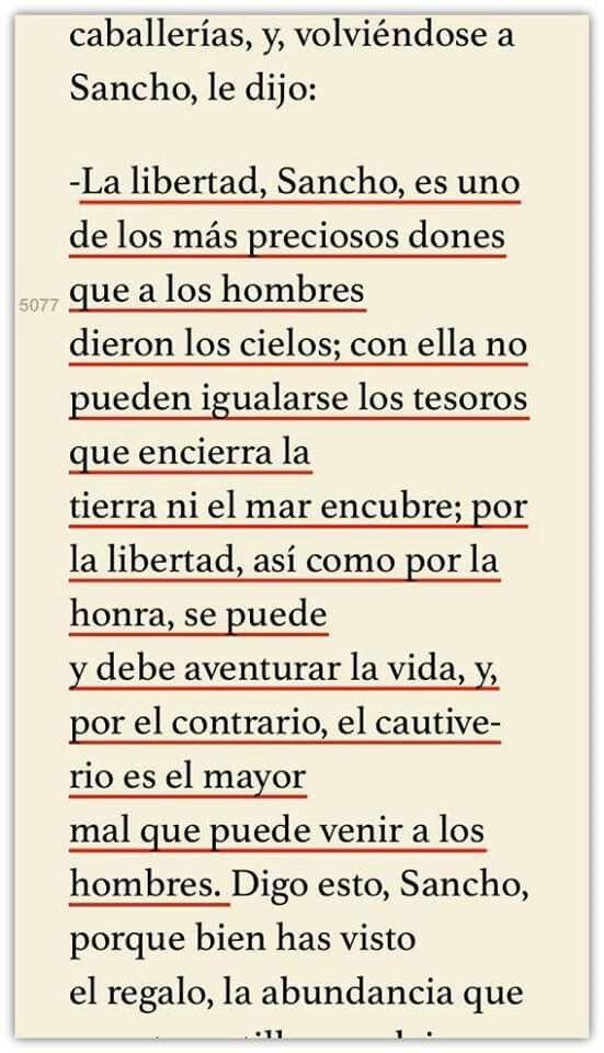 Don Quijote, reflexiona sobre la libertad...   ¿Qué os parece? ¿Estáis de acuerdo con que la libertad es eso?