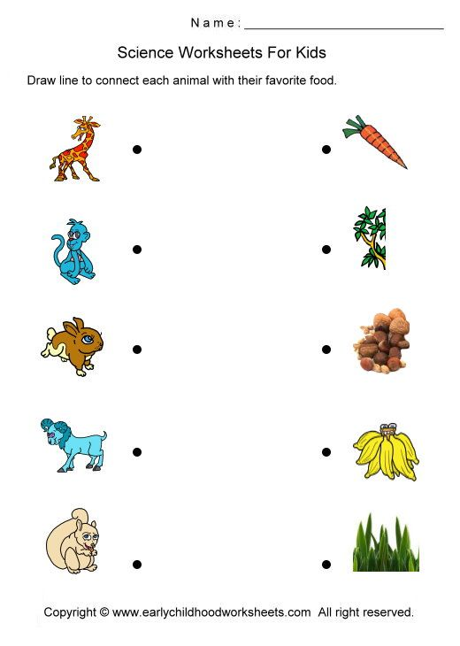 71 best pörun images on Pinterest | Preschool worksheets, Animals ...
