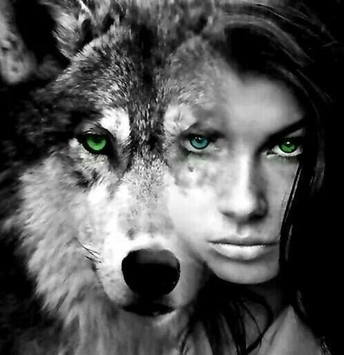 Innocent make wolf black and its