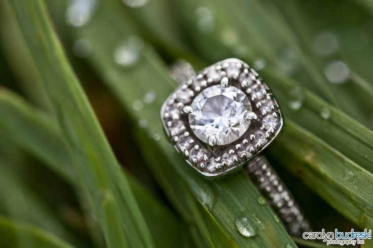 Engagement Ring Photo Ideas. Macro Shot in the grass.  More Wedding & engagement photos here: www.Facebook.com/CarolynBudreskiPhotography