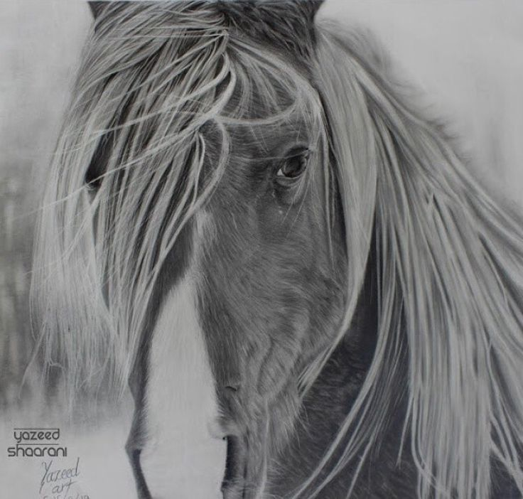 Drawing by pencil . I spend three weeks for this drawing