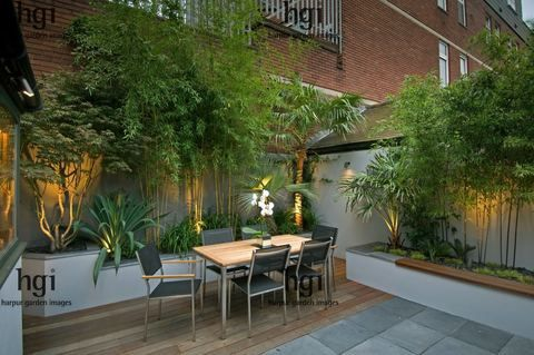 Small urban contemporary town courtyard garden Bamboo raised bed border retaining wall table chair Orchid decking lighting dining table chair entertaining outdoor living boundary wall palm tree uplighting uplit Acer tree Palm tree Trachycarpus fortunei