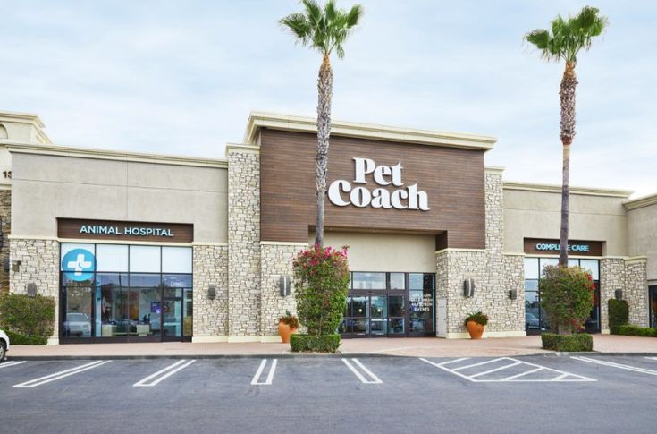 Petco Opens Store That Offers Free Veterinary Care For A Monthly Fee Petco Veterinary Care Pet Store
