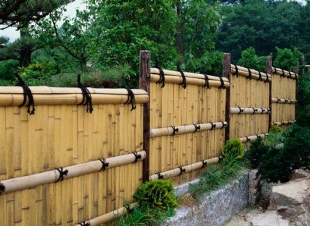 palissade jardin bambou muret pierre | clôtures,palissades ...