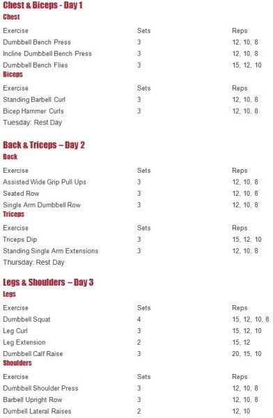 muscle building workout routine pdf